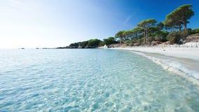 Palombaggia wyrzucać na brzeg, Corsica, Francja, Europa