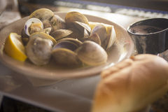 Palourdes cuites à la vapeur en vin blanc Image stock