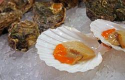 Palourdes espagnoles fraîches au marché de fruits de mer photographie stock libre de droits