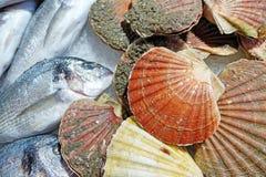 Palourdes et poissons frais Photos libres de droits