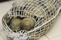 Palourdes fraîches dans le sac de fruits de mer de maille Photos libres de droits