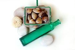 Palourdes fraîches - loquet du jour Images stock