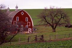 Palouse Barn Stock Images
