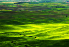 Palouse Colors Stock Images