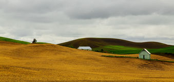 Palouse Colors Royalty Free Stock Photo