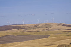 Palouse Country in southeastern Washington State Royalty Free Stock Images