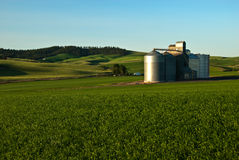 Palouse Elevators Royalty Free Stock Photo