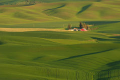 Palouse farm Stock Images