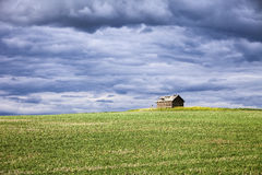Palouse Farm Building And Field Stock Images