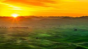 Palouse-Hügel im Sonnenaufgang Stockfotografie
