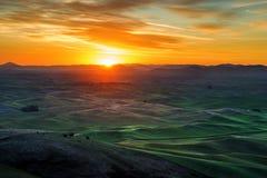 Palouse-Hügel morgens Lizenzfreie Stockfotos