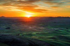 Palouse Hills in the Morning Royalty Free Stock Photos