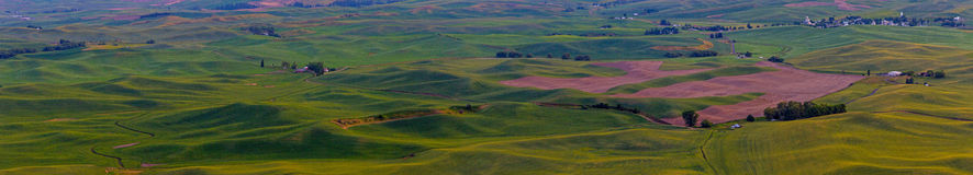 Palouse Hills Panorama Royalty Free Stock Photo
