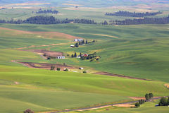Palouse landscape Royalty Free Stock Images