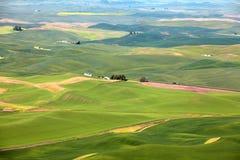 Palouse-Landschaft von Steptoe-Butte Stockfotografie