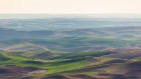 Palouse Rolling Hills no embaçamento, Washington Imagem de Stock Royalty Free