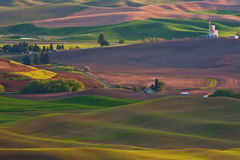 palouse washington Arkivfoton