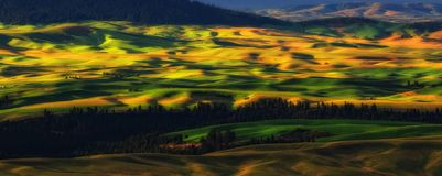 Palouse, Washington State Stock Photo
