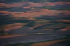 Palouse Washington van Steptoe-Butte Royalty-vrije Stock Foto