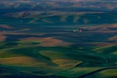 Palouse Washington von Steptoe-Butte Lizenzfreie Stockfotos