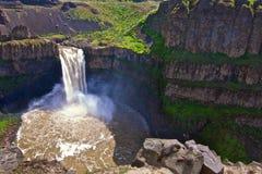 Palouse-Wasserfälle mit Gelb aufgeblähten Murmeltieren Lizenzfreie Stockfotos