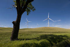 Palouse Wind Farm. Palouse Wind is a 105 megawatt wind farm located in northern Whitman County. Wind has emerged as the country's fastest-growing source of new Stock Photo