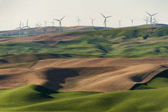 Palouse Wind Turbines Stock Image