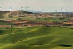 Palouse-Windkraftanlagen Lizenzfreie Stockfotografie