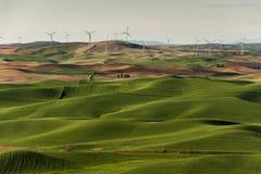 Palouse-Windkraftanlagen Lizenzfreies Stockbild