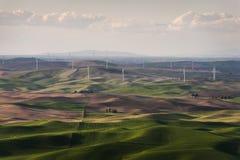 Palouse-Windkraftanlagen Stockfotografie