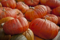 palowa pomarańcze bania Fotografia Stock