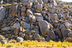 palowa skała Obrazy Stock