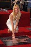 paltrow gwyneth Стоковое Изображение