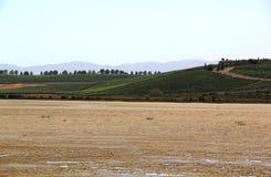 Palude d'acqua salata di Napa Valley Fotografia Stock Libera da Diritti