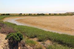 Palude d'acqua salata di Napa Valley Fotografia Stock