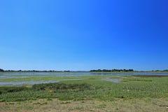 Palude d'acqua salata nel golfo di Morbihan, Francia Immagini Stock Libere da Diritti