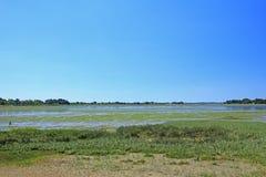 Palude d'acqua salata nel golfo di Morbihan, Francia Fotografia Stock Libera da Diritti