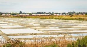 Palude d'acqua salata tradizionale di Noirmoutier durante il raccolto del sale Immagine Stock Libera da Diritti