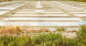 Palude d'acqua salata tradizionale di Noirmoutier durante il raccolto del sale Fotografie Stock