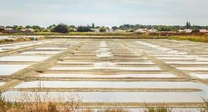 Palude d'acqua salata tradizionale di Noirmoutier durante il raccolto del sale Fotografie Stock Libere da Diritti