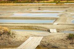 Palude d'acqua salata tradizionale di Noirmoutier durante il raccolto del sale Immagine Stock
