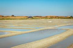 Palude d'acqua salata tradizionale di Noirmoutier durante il raccolto del sale Immagini Stock Libere da Diritti