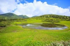 Palude del Mt Hakkodasan Fotografia Stock Libera da Diritti