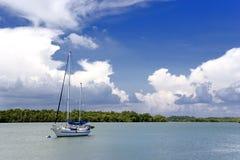 Palude della mangrovia e dell'yacht fotografia stock