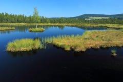 Palude di Chalupska nel parco nazionale di Sumava Fotografie Stock