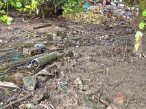 Palude inquinante della mangrovia Immagini Stock Libere da Diritti