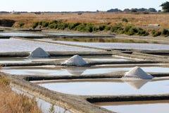 Paludi d'acqua salata di Noirmoutier Immagine Stock Libera da Diritti