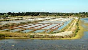 Paludi d'acqua salata in Noirmoutier fotografia stock