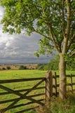 Paludi di Lincolnshire, Regno Unito immagini stock
