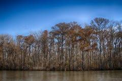 Paludi di New Orleans Fotografia Stock